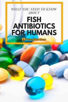 There is a lot of controversy and confusion in the disaster prepping community on the topic of fish antibiotics for human use.If you are thinking of stockpiling them in your Just-In-Case supplies, here is what you need to know. Survival Supplies, Emergency Supplies, Survival Prepping, Survival Skills, Survival Books, Survival Quotes, Survival Stuff, Fish Antibiotics, Thing 1