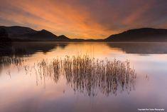 Dawn, Bassenthwaite. Pete Tasker Photography @petetaskerphotography Art Gallery - Keswick Bassenthwaite Lake, Northern England, Cumbria, Lake District, British Isles, Dawn, Photo Galleries, Art Gallery, Illustrations