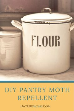 A Pantry Moth Repellent Spray that really works and gets rid of pesky moths in your pantry that destroy your food and hide all over your home. Essential Oil Spray, Essential Oils, Pantry Moths, Moth Repellent, Natural Cleaners, Green Cleaning, Cleaning Tips, Natural Cleaning Products, Household Products