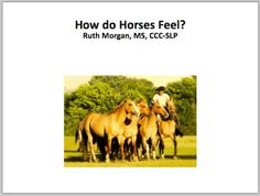 Chapel Hill Snippets: How do Horses Feel? Printable book with icons (Free). Pinned by SOS Inc. Resources. Follow all our boards at pinterest.com/sostherapy for therapy resources.