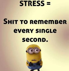 .STRESS =  Shit. To. Remember. Every. Single. Second.