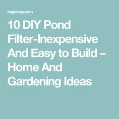 10 DIY Pond Filter-Inexpensive And Easy to Build – Home And Gardening Ideas