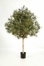 Olijfboom Natural Topiary 150cm