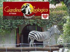 Zoo di Pistoia - Zoo of Pistoia - Italy