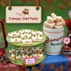 Owl Camp Out Party