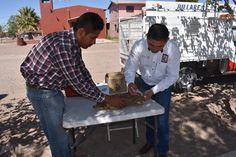 El gobierno municipal encabezado por el alcalde Noel Dolores Loya Lozano, continúa con la campaña de vacunación antirrábica....