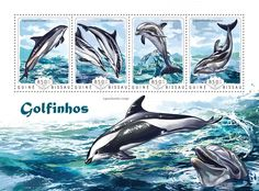 Post stamp Guinea-Bissau GB 14604 a	Dolphins (Lagenorhynchus acutus, {…}, Lagenoryhynchus obliquidens)