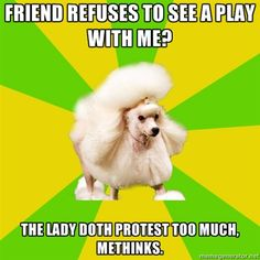 36 Pretentious Theatre Kid Poodle Ideas Theatre Kid Theatre Pretentious