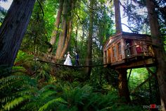 Transport back to simpler times by hosting your event in a treehouse. Treehouse Point, located just 22 miles from Seattle, Wash. #weddingvenue