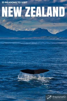 New Zealand is probably one of the most photogenic country's on earth. There are many reasons to visit New Zealand including adventure travel, hiking, water sports and culture, but capturing the beauty of its diverse scenery is what will make your holiday here most memorable | The Planet D: Adventure Travel Blog