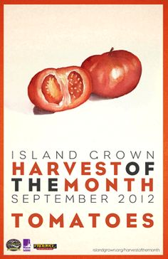 First poster of a monthly Farm to School Campaign on Martha's Vineyard spearhead by the Island Grown Schools organization.  Designed by HDS with illustrations by local artist Ashley Chase.   www.islandgrown.org/harvestofthemonth     www.hayesdesignstudios.com