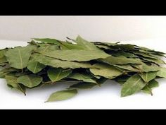 Items similar to Dried leaves. Aromatic leaves for your meat, potatoes, soups etc. on Etsy Herbal Remedies, Home Remedies, Natural Remedies, Laurus Nobilis, Health Vitamins, Health Resources, Gifts For Cooks, Dry Leaf, Homemade Skin Care