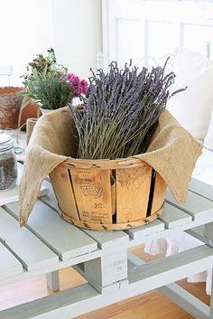 ~*Lavender in a great wood basket. Lavender Cottage, Lavender Green, Lavender Fields, Lavender Flowers, French Lavender, Silk Flowers, Growing Lavender, Wood Basket, Decoration Table