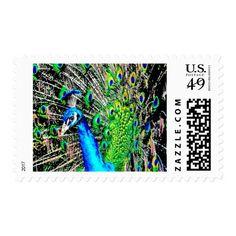 Prancing Peacock 2 Stamp