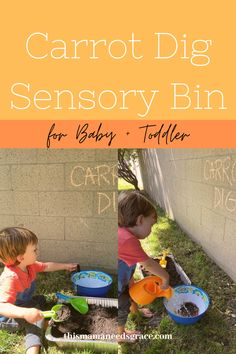 Sensory bin that is really simple to put together.  This dirt and carrot bin is the perfect activity for your garden-loving toddler! All you need is some soil, a few carrots, and a bowl of water to wash them.  #CarrotSensoryBin #Toddler #SensoryBinIdeas