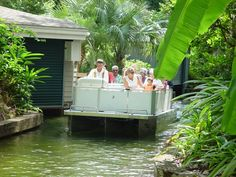 Easy, Inexpensive and Exciting, Winter Park´s Scenic Boat Tour in a Natural Attraction Winter Park, Florida - Adventuresome for the first time visitors seeking flora and fauna or savvy Orlando trav...