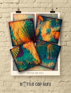 SUNSET SEASHELLS 3.8x3.8 inch Printable Images for Coasters & Crafts by BottleCapGuru Digital Form, Digital Collage, Digital Image, Coaster Crafts, Collage Sheet, Seashells, Jewelry Crafts, Gift Tags, Coasters