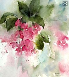 Pink Blossom, a watercolor painting by Rachel McNaughton Watercolor Pictures, Watercolor Cards, Abstract Watercolor, Watercolour Painting, Watercolor Flowers, Watercolors, Pink Blossom, Abstract Flowers, Flower Art