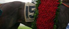 ky-derby-roses