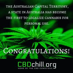 CBD Chill provides up-to-date information on CBD oil, it's uses and how to buy CBD oil online. Australian Capital Territory, Oil Benefits, Time Capsule, Consciousness, Continue Reading, Acting, It Cast, Things To Come, Medical