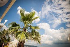 Disco.BG – :: Disco Bar BRILIANTIN Sunny Beach BULGARIA presents BEACH PARTY 20.07.2014 :: Night Club, Night Life, Disco Night, Disco Club, Sunny Beach, Beach Party, Bulgaria, Sunnies, Presents