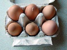 Strangely Pigmented Eggs