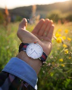 #danielwellington #dwsummerstyle #Bologna #ViaIndipendenza #watches #NATO #nature