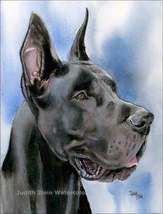 dog great  danish german | GREAT DANE BLACK Dog 15x11 Giclee Watercolor Print by k9stein