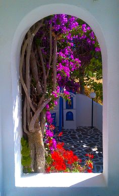 Peeking into the courtyard in Skala, Kefalonia, Greece