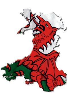 Wales Map, Millennium Stadium, Cymric, Welsh Castles, Saint David's Day, Cardiff Bay, Visit Wales, Swansea, Red Dragon