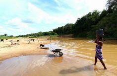 PORTAL DE ITACARAMBI: Moradores das ilhas fluviais se assustam com a sec...
