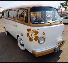 VW van...love the hibiscus