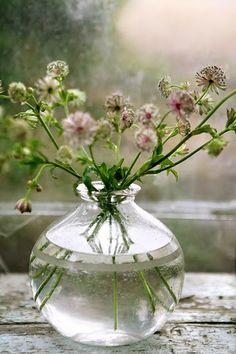 vase of wildflowers by Tina Brok Hansen Photography