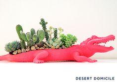 DIY Crocodile Succulent Planter