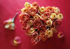 From the Heart, Valentine's Day Heart Flower in 2014, 2014 Lovers Day Heart Flowers