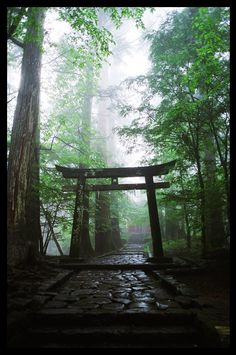 Torii Gate. Nikko, Japan