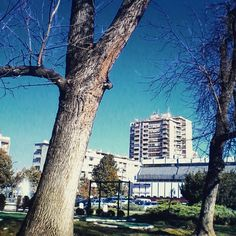 #serbia #leskovac
