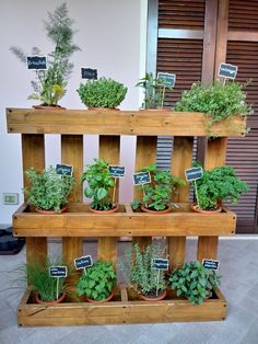 24 Awesome Vertical Garden Design Ideas And Remodel. If you are looking for Vertical Garden Design Ideas And Remodel, You come to the right place. Here are the Vertical Garden Design Ideas And Remode. Herb Garden Pallet, Herb Garden Design, Diy Herb Garden, Small Garden Design, Garden Planters, Vertical Pallet Garden, Wood Pallet Planters, Garden Tips, Pallet Garden Projects