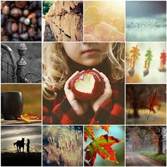 I love Autumn and Collages Hello Autumn, Autumn Day, Autumn Leaves, Winter, Happy Fall Y'all, Happy Sunday, Fall Season, Fall Crafts, Collages