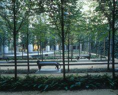 Michael Van Valkenburgh Associates, Inc.50 AVENUE MONTAIGNE Paris, France