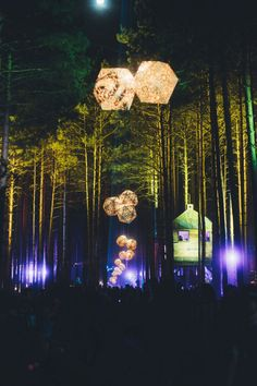 EDM VIBE - electricforestfest: A path best taken by. Alive Festival, Forest Festival, Hippie Festival, Art Festival, Forest Light, Electric Forest, Forest Party, Forest Theme, Psychedelic Artists