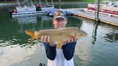 Common Carp, Have A Great Day, Fishing, Action, Surface, Boat, Check, Group Action, Dinghy