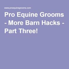 Pro Equine Grooms - More Barn Hacks - Part Three!