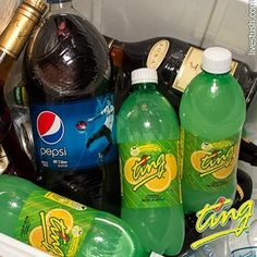 jamaica ting - Google Search