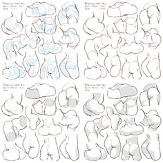 "drawingden: ""Pelvis Anatomy by Mendel Oh """