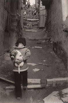 Noi che portavamo a casa gli animali trovati in strada