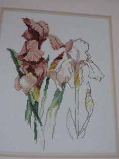 SeeSallySew.com - Iris II Beverly Sills Floral Flowers Design Cross Stitch Needlework Green Apple 590 Pattern Chart , $8.99 (http://stores.seesallysew.com/iris-ii-beverly-sills-floral-flowers-design-cross-stitch-needlework-green-apple-590-pattern-chart/)