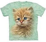 Boys' Clothing (Sizes 4 & Up) The Mountain Kitten Portrait Orange Cat Face Pet Cute Shirt Child / Youth S Cute Kittens, Cats And Kittens, 3d T Shirts, Cute Shirts, Oeko Tex 100, Cat Face, Cat Design, Dragons, Screen Printing