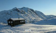 Lossihytta, Narvik, Nordland