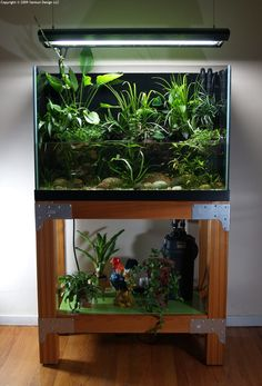 Like the combination of houseplants with aquatic culture.